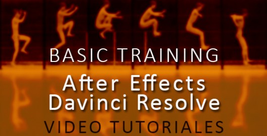 BASIC TRAINING after davinci